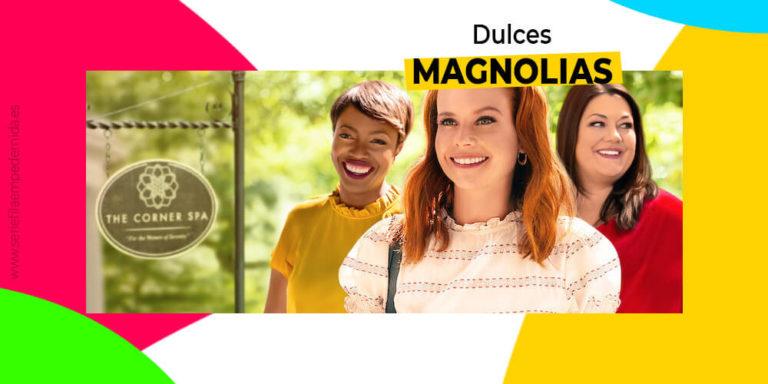 Dulces magnolias, dramas en el sur